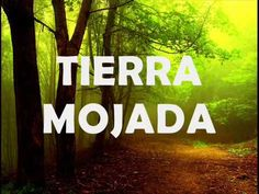 Tierra mojada - YouTube Music Publishing, Youtube, Album, Songs, December, Earth, White People, Song Books, Youtubers