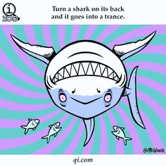 Image result for shark facts