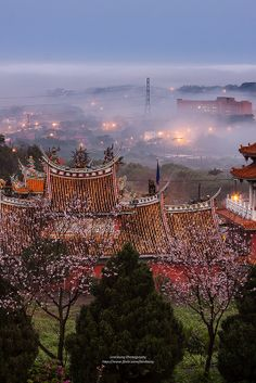 Cheery Blossoms at Tian Yuan Temple, Taiwan Shanghai, Places Around The World, Travel Around The World, Around The Worlds, Taiwan Travel, Asia Travel, Wanderlust Travel, Beautiful Islands, Beautiful Places