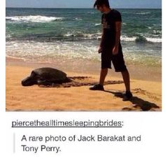 A rare photo of Jack Barakat & Tony Perry. Emo Bands, Music Bands, All Time Low, All About Time, Bae, Tony Perry, Jack Barakat, Screamo, Love Band
