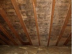 Get Rid of Mold in Attic Naturally with vinegar, green tea oil and alcohol. Attic Mold Remediation Methods and Costs of Killing Attic Mold. Toxic Black Mold, Remove Black Mold, How To Remove, Remove Mold, Toxic Mold, Attic Renovation, Attic Remodel, Green Tea Oil, Mold Prevention