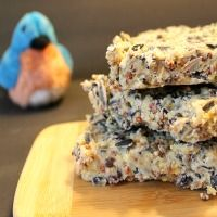 Make Your Own Homemade Birdola Birdseed Cakes - The Make Your Own Zone Homemade Baileys, Homemade Bbq, How To Make Homemade, Daily Shower Cleaner, Daily Shower Spray, Homemade Cleaning Products, Cleaning Recipes, Homemade Watercolors, Easy Yarn Crafts