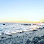 Plage de Quiberon wild  sea  ocean  hiver vegan  Beach  plage  Bretagne  france  roadtrip  holidays  instagood  picoftheday  happy