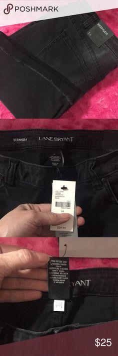 NWT Lane Bryant Bermuda shorts NWT Lane Bryant black denim Bermuda shorts. Cuffed with ragged hem, has light wiskering size 14 Lane Bryant Pants