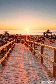 Sueño con despertar cada día con esta visión. Arenales del Sol. Elche.