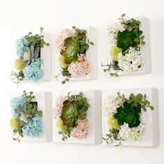 flowers mixed with succulents wall - Google Search
