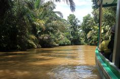 tortuguero all inclusive tour page suerte river   - Costa Rica