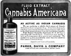 Parke Davis Fluid Extract of Cannabis Americana -- Pure, standardized, and quite a bargain.