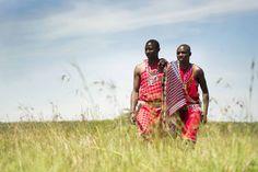 Volunteer opportunities in Kenya! Award-winning organization African Impact run and manage wildlife conservation and community development volunteer projects across Kenya. African Impact, Wildlife Conservation, Modern City, Kenya, Safari, Women, Fashion, Moda, Fashion Styles