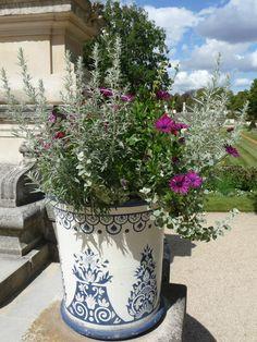 Potée fleurie dans le Jardin des Serres d'Auteuil, Paris 16e (75), 26 août 2012, photo Alain Delavie  http://www.pariscotejardin.fr/2012/09/le-jardin-des-serres-dauteuil-en-ete/#