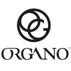 new logo organo organogold tastethegold organo gold pinterest rh pinterest com organo gold login organo gold new logo