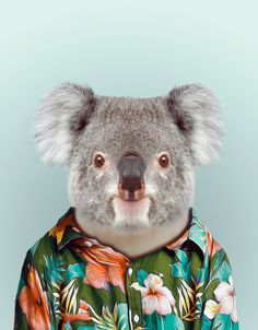 Zoo Portraits by artist Yago Partal combine photography with fashion illustration where Partal's photos of animals are dressed up in human clothing, their dapper duds uncannily expressing each animal'