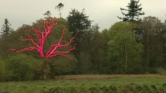 painted tree sculpture - Google Search