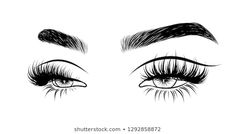 Abstract fashion illustration of the eye with creative makeup. Hand drawn vector idea for business visit cards, templates, web, salon banners,brochures. Natural eyebrows and glam eyelashes Eyelash Logo, Eyelash Brands, Eyelash Case, Eyelashes Drawing, Eyelashes Grow, Whatsapp Logo, Russian Volume Lashes, Lash Quotes, Lashes Logo