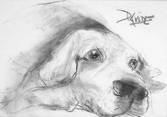 'Alfie by the Aga' by Valerie Davide - Original Artwork £410