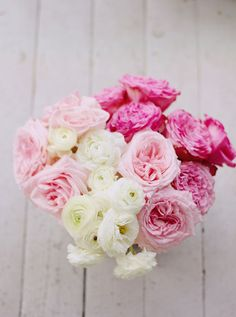 Still Life Photography  Pink White English Roses by Kristybee