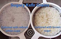 SKG in white or brown sugar with ginger