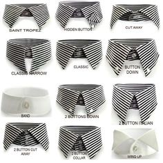know your collar options.