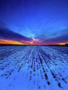✮ Twilight Rows by Phil Koch