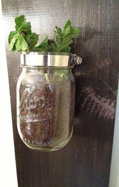 10 herb garden 1