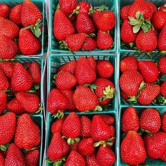 Dreaming of these ruby red strawberries at the Santa Monica farmer's market this summer ☀️ so many fresh, local fruits and veggies  eating healthy is all about finding what works for YOU--- learn from others but always remember to listen to your own body ✨