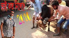 ভাই কত নিলো? Bhai Koto Nilo? Boyaliya Haat 2020