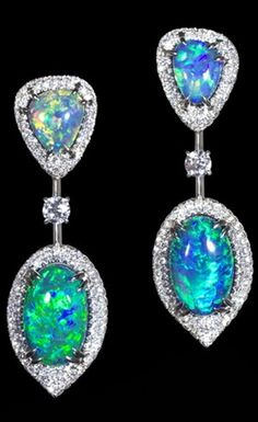 Earrings David Morris Without flaming rainbow colors of jewelry with black and white opal jewelry picture of the world would be incomplete and far more boring.