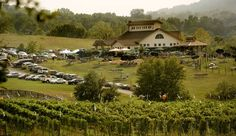 A spin through Virginia's wine country - The Washington Post- Barrel Oak Winery