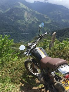 Scrambler, Honda, Motorcycle, Cafe Racers, Vehicles, Illustrations, Custom Bikes, Illustration, Motorcycles