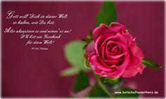 Du bist ein Geschenk Gottes. Du darfst es ruhig dankbar annehmen und stolz auf Dich sein...