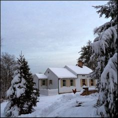 My Snow Cottage | Content in a Cottage