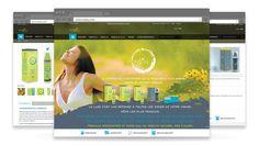 Création de site internet COSILEA