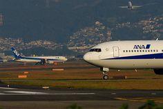 All Nippon Airways B767-300