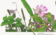 猫絵描きneupyの花のイラストと「銀魂」ヘタレらく描き。 【ラストニャンズスタンディング】