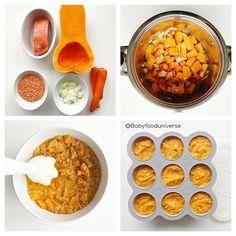Salmon, Lentil & Butternut Squash Purée [6mo+] - homemade baby food