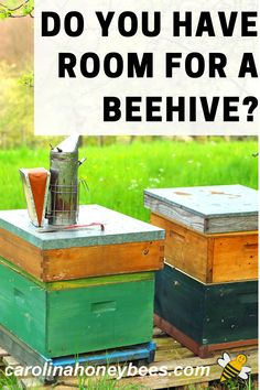Beekeeping Course, Backyard Beekeeping, Beekeeping For Beginners, Bee Honeycomb, Worm Farm, Education Humor, Worm Composting, Annual Plants, Save The Bees