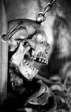 There is Beauty in Death