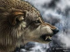 Afbeeldingsresultaat voor wolf open mouth profile Wolf Images, Wolf Pictures, Totems, Angry Wolf, Wolf Photography, Wolf Love, Beautiful Wolves, Wild Dogs, Elements Of Art