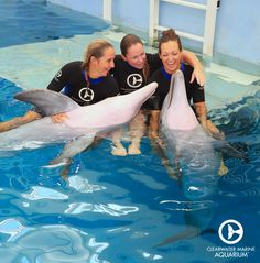 Our care providers have so much fun with Winter and Hope!