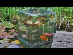 Как сделать аквариум наоборот
