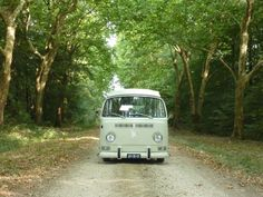 VW Early Bay Campervan camping in a forest