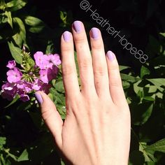Im getting a headstart on fall's pastal trend with these lilac nails. Srsly this is ine of my favoutire nail shades ever! This is Lacey Lilac by Sally Hansen Xtreme Wear. About $3 a bottle, 2 coats to opaque and lasts forever!!!!! #nails  #fall #trend #nailart #nailpolish #nailporn #nailenamel #lilac #flower #summer #cosmetic #cosmetics #beauty #beautyblog #beautychat #beautytalk #makeup #bblog #bblogger #bbloggers
