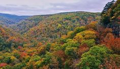 We've had a cold October and the fall colors are looking astounding in the Ozarks this year Travel Pictures, Travel Photos, Backpacking Pictures, Nature Photography, Travel Photography, Grain Of Sand, Kayak Fishing, Amazing Nature, Beautiful Images