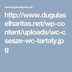 http://www.dugulaselharitas.net/wp-content/uploads/wc-csesze-wc-tartaly.jpg