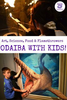 Tokyo with Kids: 21 Things to do in ODAIBA. Art, Sceience, Food and more!