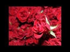 ▶ Andre Rieu - I love you - YouTube