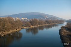 Cyklomost Slobody alias Most Chucka Norrisa Bratislava, Viera, Mountains, Water, Travel, Outdoor, Gripe Water, Outdoors, Viajes
