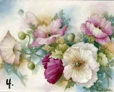 Study of Pink Poppies for china painters and porcelain artists, available online in seminars and studies from Charlene Ferrell Whitler porcelain artist and teacher