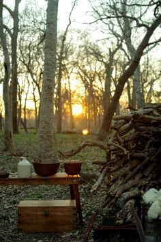 Kitchen in the woods #camping #woods