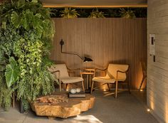 mf+arquitetos designs restaurant tartuferia san paolo filled with sunlight and green space - Dr Wong - Emporium of Tings. Amazing Greens, Inside Home, Outdoor Furniture Sets, Outdoor Decor, Restaurant Design, Natural Materials, Sunlight, This Is Us, Live Art